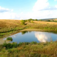 Пересыхает прудик сиротливо среди холмов и трав пожухлых... :: Андрей Заломленков