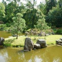 Японский сад в парке Кадриорга :: Елена Павлова (Смолова)