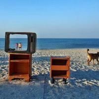The Box - пляж эмоций. У каждого с утра была своя программа... :: Александр Резуненко
