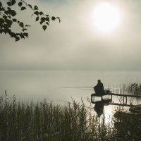 Рыбалка туманным утром :: Михаил Онипенко