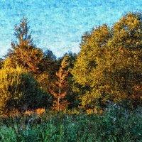 Прогулка в лесопарк 3 :: Сергей Филатов