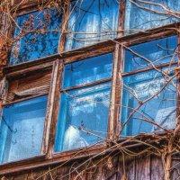 Окно в старом доме! :: Натали Пам
