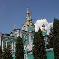 Купола Преображенского собора. Тамбов :: MILAV V