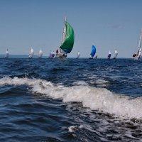 4я гонка Чемпионата России (2) :: Ingwar