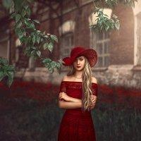 Леди в красном :: Светлана Гунина