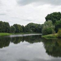 Над гладью пруда завершался август :: Александр Буянов