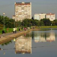 Мы с ним оба не проспали это лето :: Андрей Лукьянов