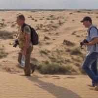 Это кусочек Сахары в астраханской области :: Василий Дудин