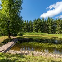 Старый мостик :: Сергей Добрыднев