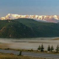 Северо-Чуйский хребет. :: Евгений Голубев