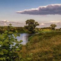 Август на Клязьме :: Андрей Дворников