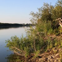 Берег реки ... :: Олег Кондрашов