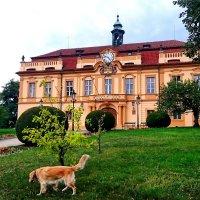 Либенский замок :: Ольга Богачёва