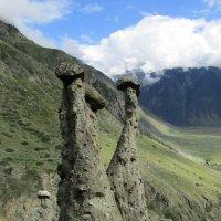 Грибочки каменные :: Galaelina
