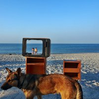 The Box - пляж эмоций. Прямой эфир... :: Александр Резуненко