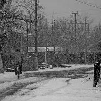 Непогода :: Александр Пиленгас