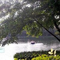 Измайловский парк :: Светлана FI