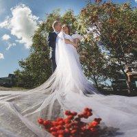 Свадьба в первый день осени... :: Ольга Гусева