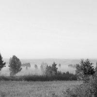 Утро. :: Валерий Молоток
