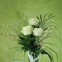 Три розы белых,белых... :: alfina