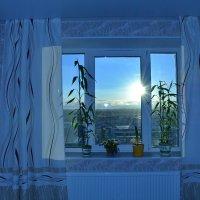 солнышко   за окном :: Валентина Папилова