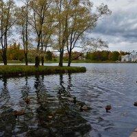 Очарование Большого пруда... :: Sergey Gordoff