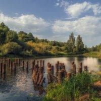 Река Войнинга,сваи старого моста :: Сергей Цветков