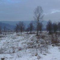 Карпатские   горы   в   Надворной :: Андрей  Васильевич Коляскин