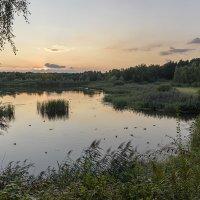 Вечерняя прогулка :: Сергей Келлер