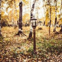 Фонарь в лесу :: Марина Кириллова