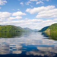Телецкое озеро :: Наталья Филиппова