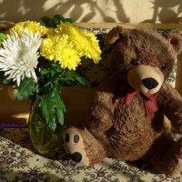 Медведь и хризантемы :: Nina Yudicheva