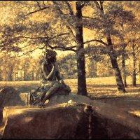В парке :: Цветков Виктор Васильевич