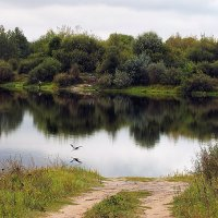 залив у Гомеля :: prokyl
