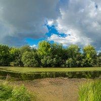 Панорама заливного озера :: Александр Синдерёв