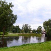 Вышла река из берегов. :: zoja