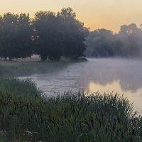 В сумрачном тумане :: Сергей Корнев