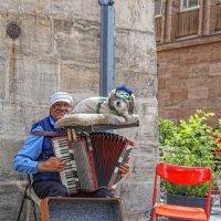 Уличный музыкант :: Владимир Леликов