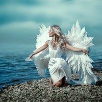 ангел :: Anna Albert