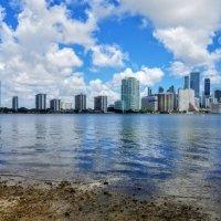 Miami :: Arman S