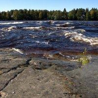 Река Выг-Беломорск :: Анжела Пасечник