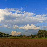 жизнь прекрасна и прекрасны облака. :: Ирина ...............