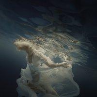 The magic of water :: Дмитрий Лаудин