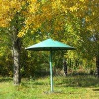 Осенний грибок :: OLLES