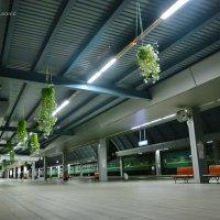 Кишинёвский вокзал поздно вечером... :: Леонид Школьный