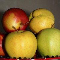 Яблоки с агатами :: Наталья Золотых-Сибирская