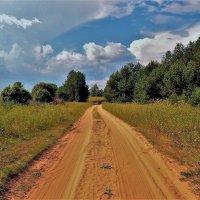 Дорога в село Кузьминское... :: Sergey Gordoff