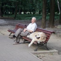 Знакомьтесь! Это пёс Боня, он спас трёх человек! :: Ольга Кривых