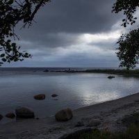 На берегах моря Белого... :: Ольга Лиманская