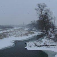 Река   Быстрица   Надворнянская   в   Вовчинце :: Андрей  Васильевич Коляскин